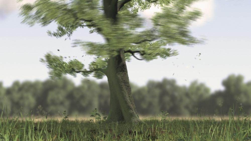 Eelco Brand, 1.movi (Ausschnitt), HD digitale Animation, endlos, Mediaplayer, 2013