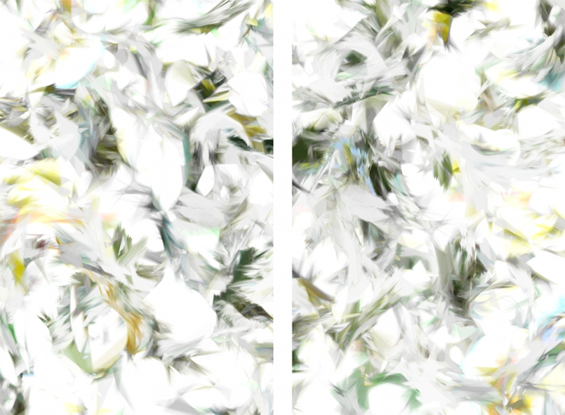 Casey Reas,Process 18 Image A-1-2, C-Print auf Aluminium, Dyptichon, je 45 x 30 cm, 2010