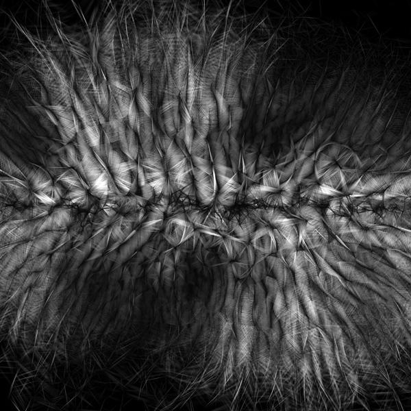 "Casey Reas, Process 13 A from ""Compendium 2004-2010"", C-print on dibond, 50 x 50 cm, 2010"