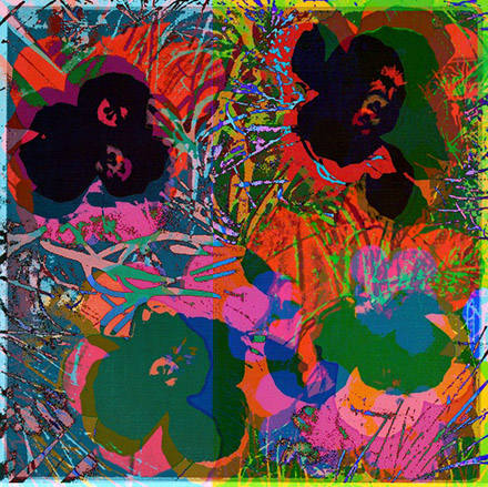 Cornelia Sollfrank, anonymous-warhol_flowers_26_18.15.08_2015, Edition: 4-er Serie, 1 Druck pro Motiv, Digitaldruck auf Alu Dibond, 70 cm x 70 cm, 2015