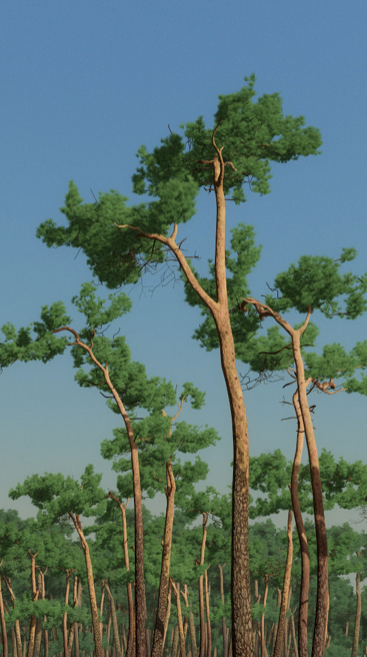 Eelco Brand, DB.movi (Ausschnitt), HD digitale Animation, endlos, Mediaplayer und Screen, 97 x 60 cm, 2012