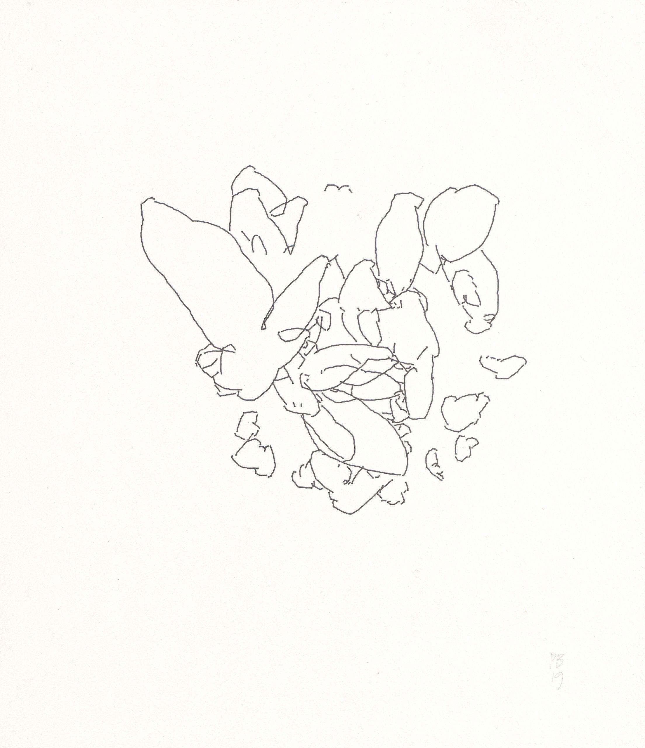 Peter Beyls, Untitled, Plotterzeichnung, Tinte auf Papier, 29 x 33 cm, 2019