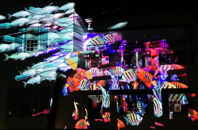 Tamiko Thiel and /p, Evolution of Fish, interaktive Augmented Reality Projektion und Installation, 2019