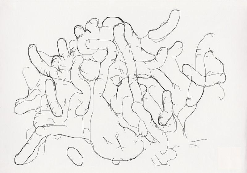 Peter Beyls, Untitled, Plotterzeichnung, Tinte auf Papier, 59,5 x 87,5 cm, 2007