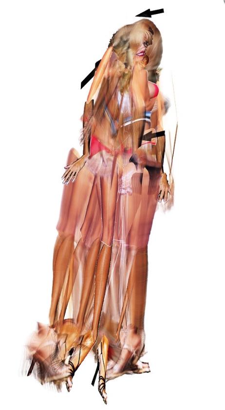 Mark Napier, Venus 2.0, Digitaldruck auf Dibond, 101 x 183 cm, 2009