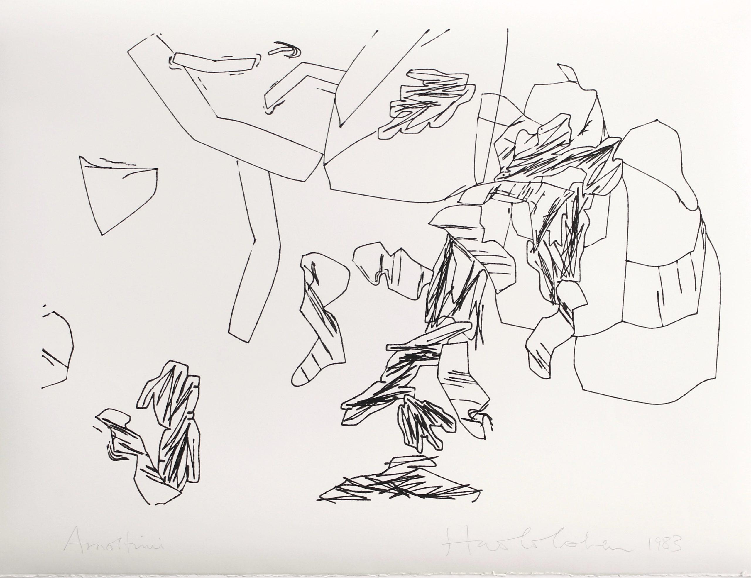 Harold Cohen, ohne Titel, Plotterzeichnung, Tinte auf Papier, 57 × 76 cm, 1983, Preis: 4 000 Euro